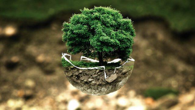 Ekologiczne życie – od czego zacząć?